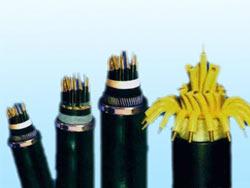 塑料绝缘和护套控制雷火电竞亚洲